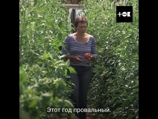 Из города в село. Оксана Захарченко. с. Бараново