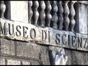 Ti Il Museo di Castelvecchio 1^ parte