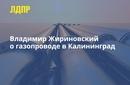 Владимир Жириновский фото #40