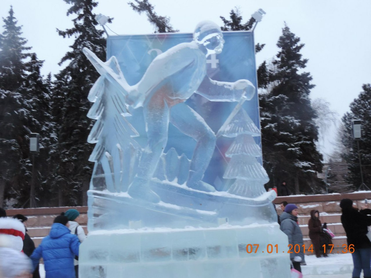Лыжник (17.01.2014)