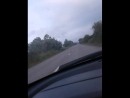 Камалдин Саидов - Live