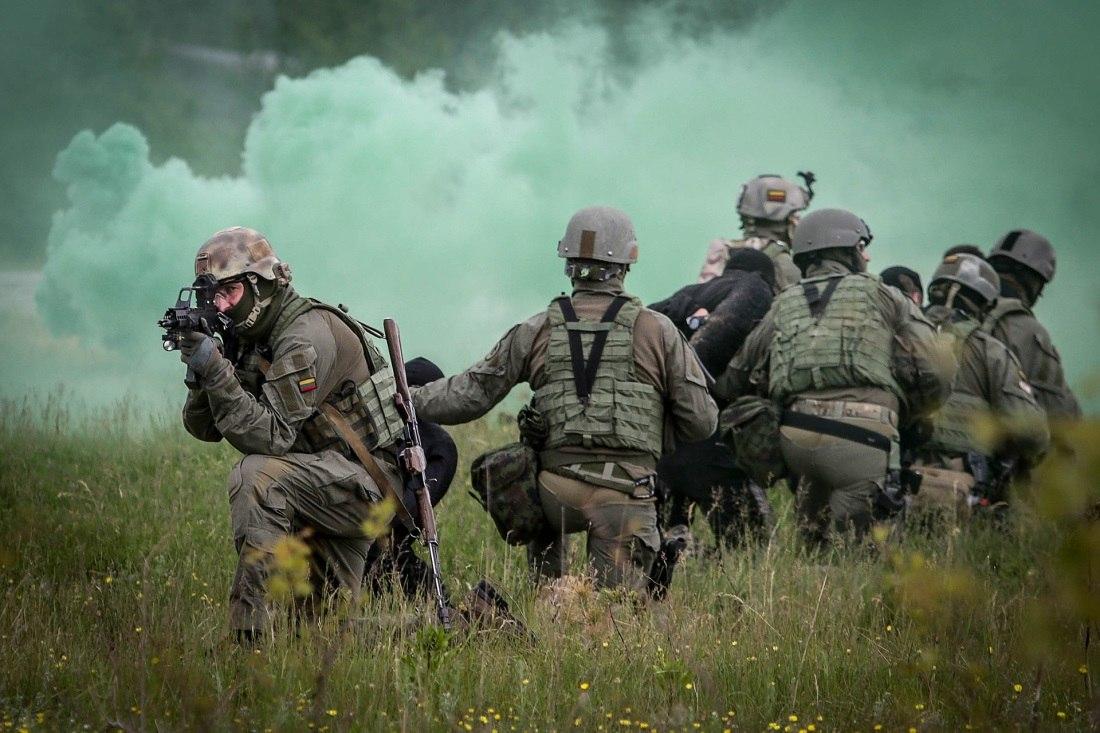 Armée lituanienne/Lithuanian Armed Forces - Page 3 DhRXZLMGMmQ