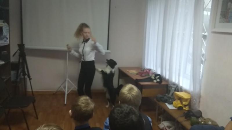 Ульяна Кузнецова и бордер колли Фора