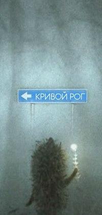 Андрей Стасенко, 5 декабря 1983, Кривой Рог, id17421256