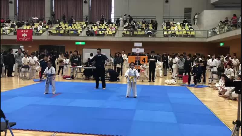 Япония Шизуока