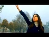 Gigliola Cinquetti- - La Rosa Nera