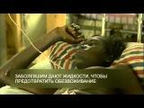 Эбола  что мы знаем об этом вирусе    BBC Russian