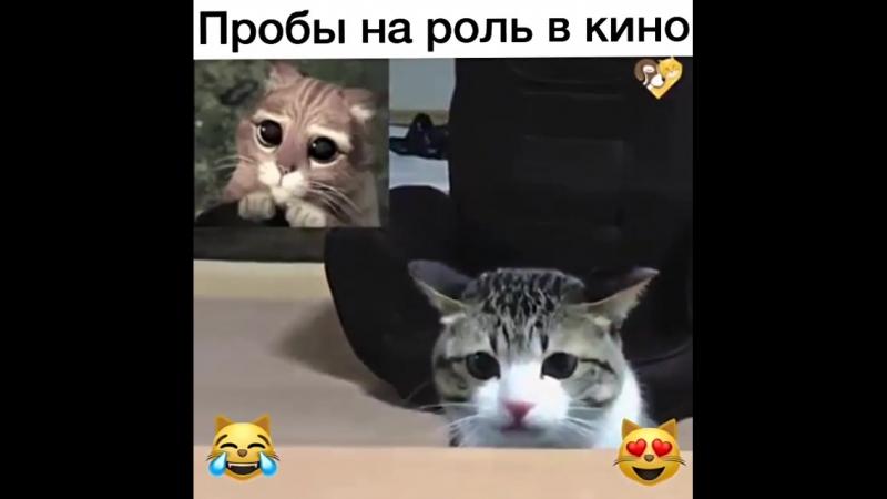 Кот в сапогах пробы актеров