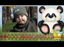 зоопарк для малышей - шаблон слайд-шоу