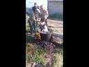 Шокирующие видео Китайцы заживо варят сабаку Китайы угроза для России после них все животные и насекомые исчезают полностью