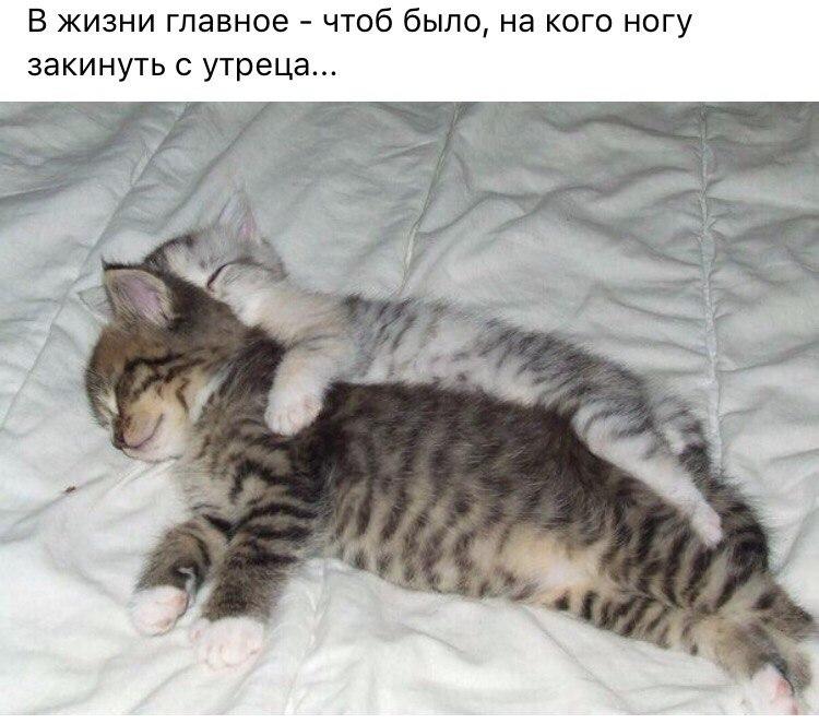 qnuZowIixpU.jpg
