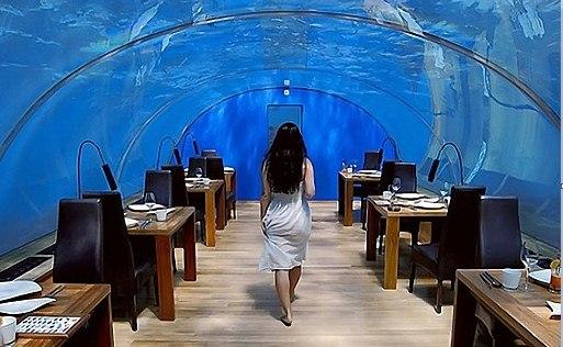 #Куда_поедем? А вы знаете, что на Мальдивских островах есть отель, находящийся под водой? Отель на курорте Рангали Мальдивских островов предлагает гостям уникальный отдых. Этот отель известен на протяжении 5лет своим подводным рестораном и номерами, располагающимися под сверхпрочным акриловым куполом на глубине 5 метров. Только здесь за обедом и в своих номерах гости могут любоваться удивительным подводным миром и его обитателями в естественной среде.