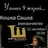 Электрический концерт Кошки Сашки СОСТОИТСЯ!!!