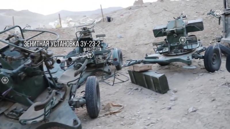 Видео с территории российской военной базы в Пальмире в декабре 2016 года