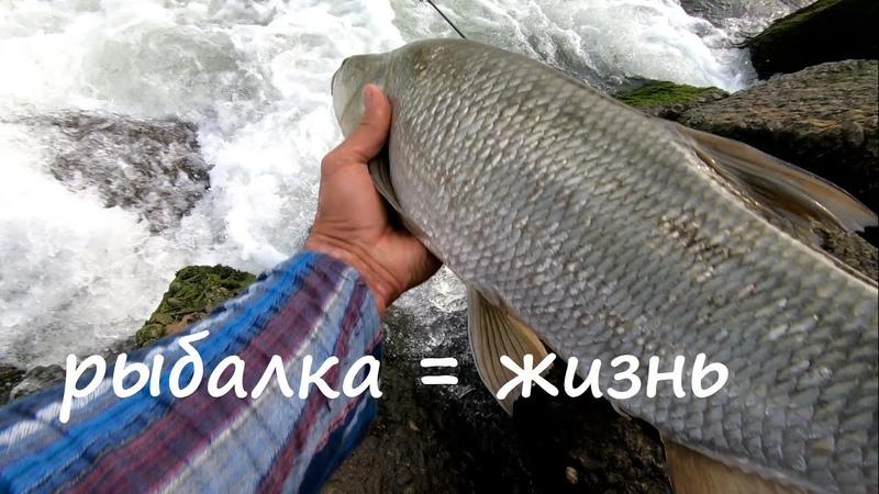 не за рыбой на рыбалку
