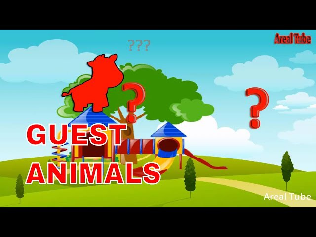 Animal Sounds For Kids Guest Picture And Sound Of Cute Animals (Zebra, Giraffe, Lion, Monkey)