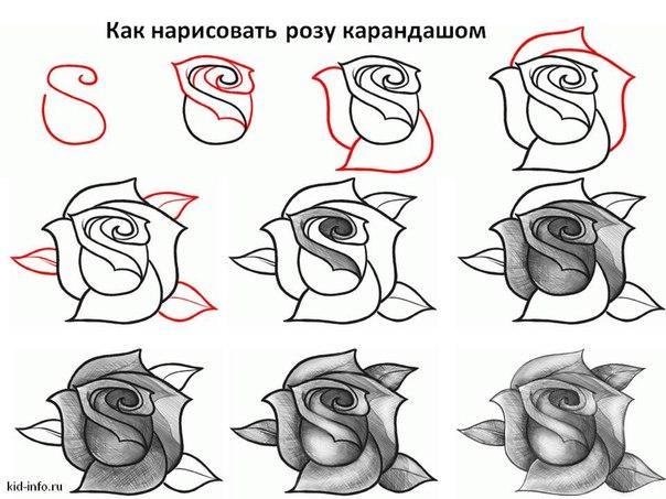 Як намалювати розу ваша думка в комент