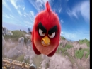 Angry birds в кино в понедельник на 31