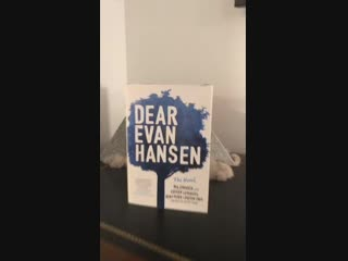 Hooray! @DearEvanHansen has made it to the west coast! To celebrate the DEHtour premiere in LA last weekend I just wanted to sho