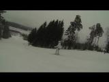 Экшн-видео Золотая Долина (spz-22-22)