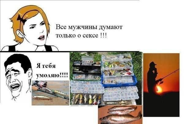 http://cs309321.vk.me/v309321210/a147/eLU9b97z7ik.jpg