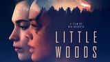 Little Woods Official Trailer In Select Theaters 419