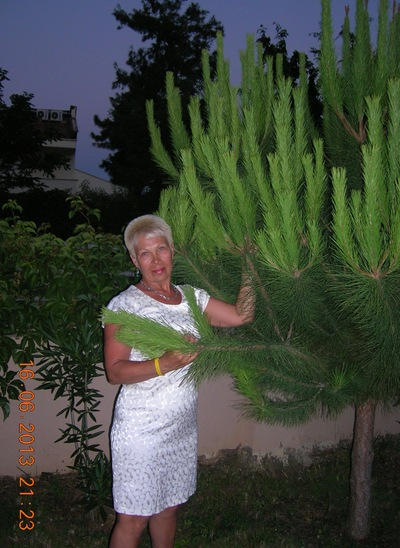 Ольга Ерольская, 17 июня 1958, Самара, id187078309