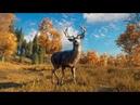 УСПЕШНАЯ ОХОТА - TheHunter: Call of the Wild.