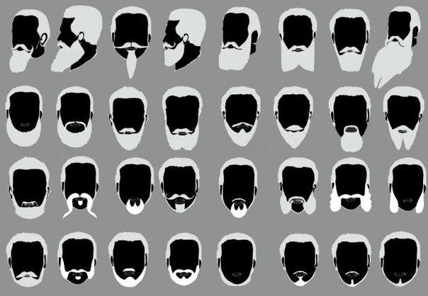 Решили отращивать бороду? На лице уже появилась первая неаккуратная небритость и совсем непонятно что с нею делать. Какая форма бороды подойдет вашему лицу? Формы лица определяют тип бороды. Для треугольного лица требуется зрительно расширить нижнюю часть лица, чтобы подбородок стал более массивным. Можно попробовать бороду в форме квадрата, подковы или слегка округлую. Обладателям круглого лица будет к лицу борода от виска до виска и/или трапецевидная. К ней подойдут усы среднего размера. Это…