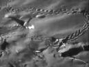 Pichiciego Chlamyphorus Truncatus Harl por Dr Jose Luis Minoprio 1943