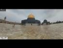 Звериный храм стоит
