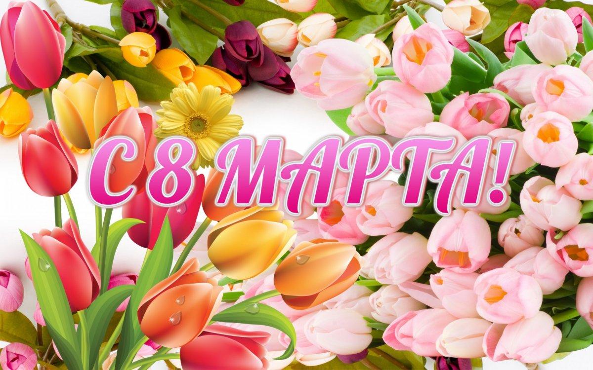 Хазина Тур поздравляет всех милых дам с 8 марта! | Хазина Тур ...