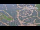 Солнечная электростанция в форме панд на севере Китая