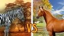 Зебры vs Лошади   Приручение и Одомашнивание   CGP Grey на русском   Мудреныч