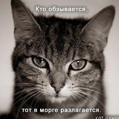 Льоля Левчук, 31 августа , Казань, id210572351