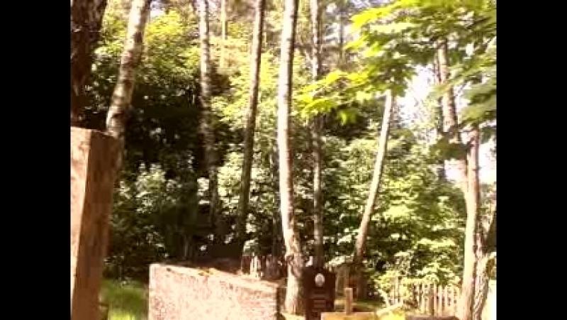 Новікаўскі (Слабацкі) пагост . На магіле Максіма Танка ў дзень яго памяці 7 жніўня 2018