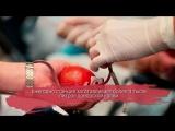 Вологодской станции переливания крови 80 лет