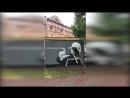 Шнуров помог петербургским художникам нарисовать граффити с Черчесовым