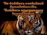 doc416011072_462187596.mp4