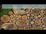 Бизнес идеи: изготовление садовых дорожек из дерева своими руками