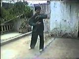 Вьетнамский Вин Чун - Дракон,Змея,Журавль