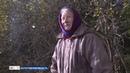 Дрова в кредит: 72-летняя жительница Стризнево со страхом ждёт зимы