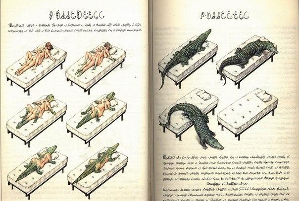 Самая странная книга вселенной - Codex Seraphinianus.