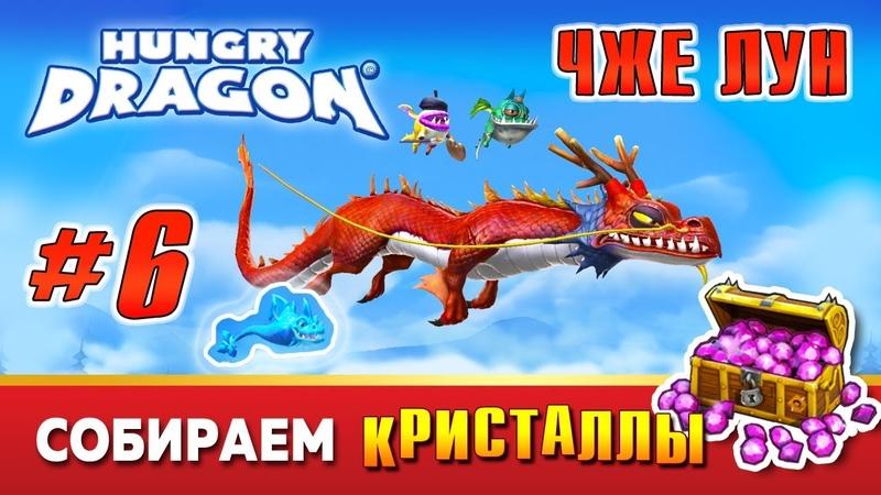 Hungry Dragon™. Голодный Дракон. Быстрый Дракон ЧЖЕ ЛУН. 6 серия.