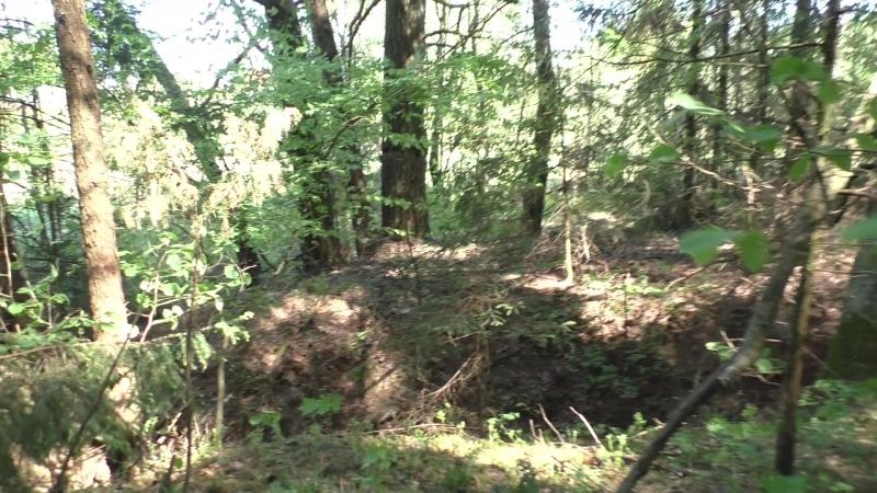 Сморгонь. Лес-8 (Дискордия). Первая траншея по сев. краю леса . Часть 3