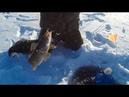 Рыбалка на Тептяргах. Первый опыт на жерлицы!