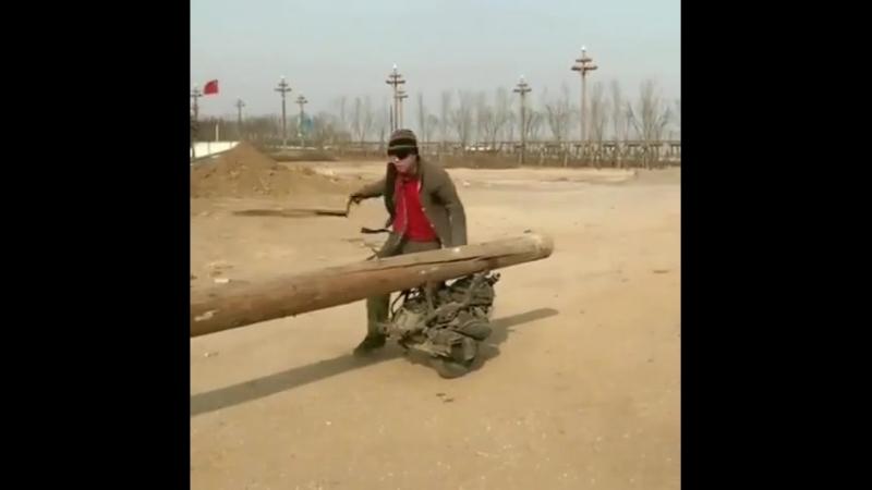 Так вот зачем китайцам наш сибирский лес