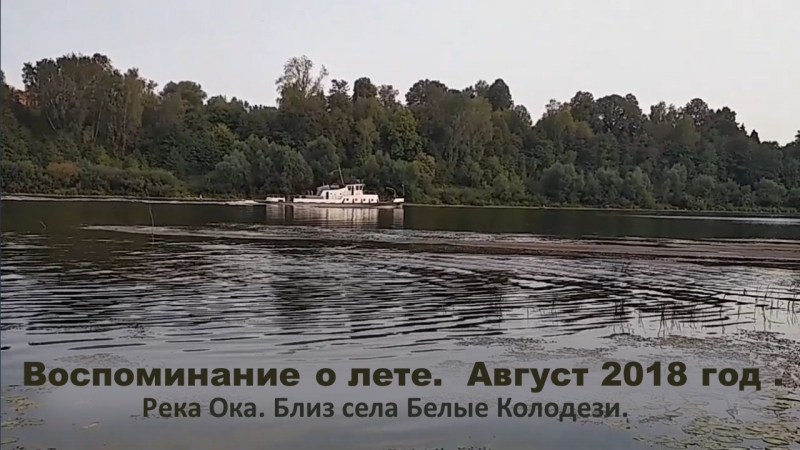Воспоминание о лете. Август 2018 г. Река Ока. Близ с. Белые Колодези.