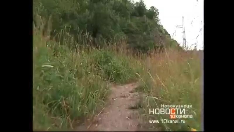 Первый эко-квест «Кузнецкая экспедиция» прошел в Новокузнецке