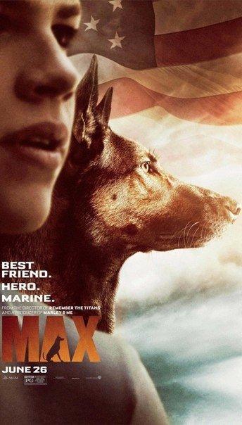 Подборка из 4 разнообразных, но столь искренних фильмов про настоящую собачью преданность и дружбу...